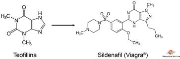 Fig.1 – Formula di struttura della teofillina e del sildenafil - Viagra