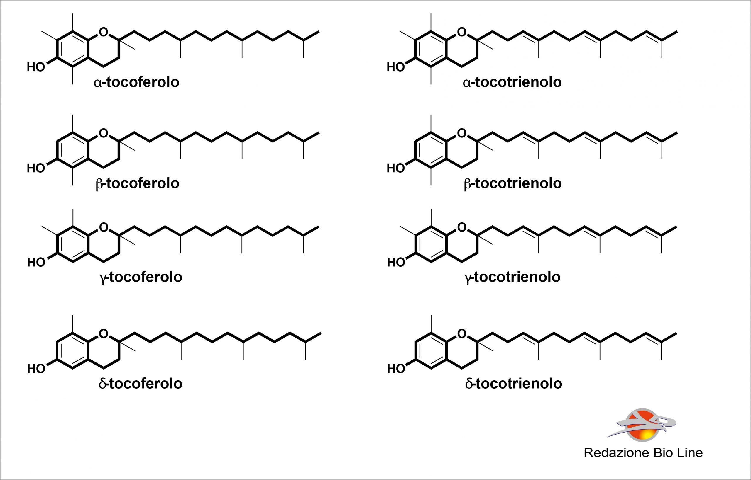 Bioline Integratori - Vitamina E