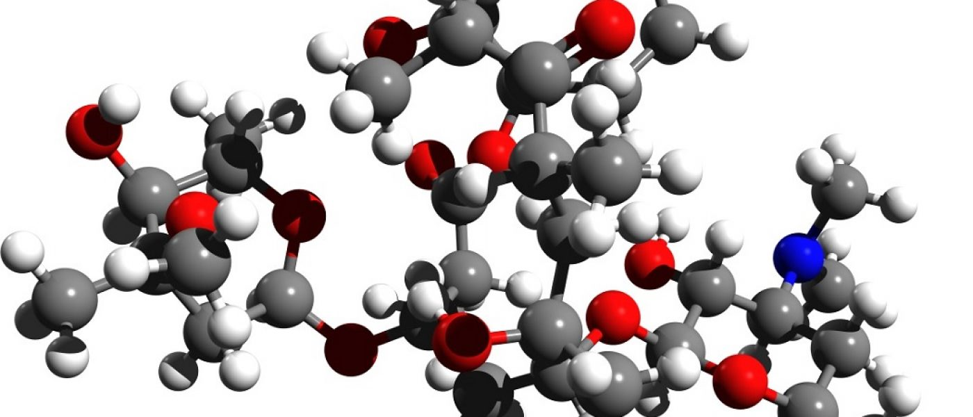 Erythromycin_3d_structure